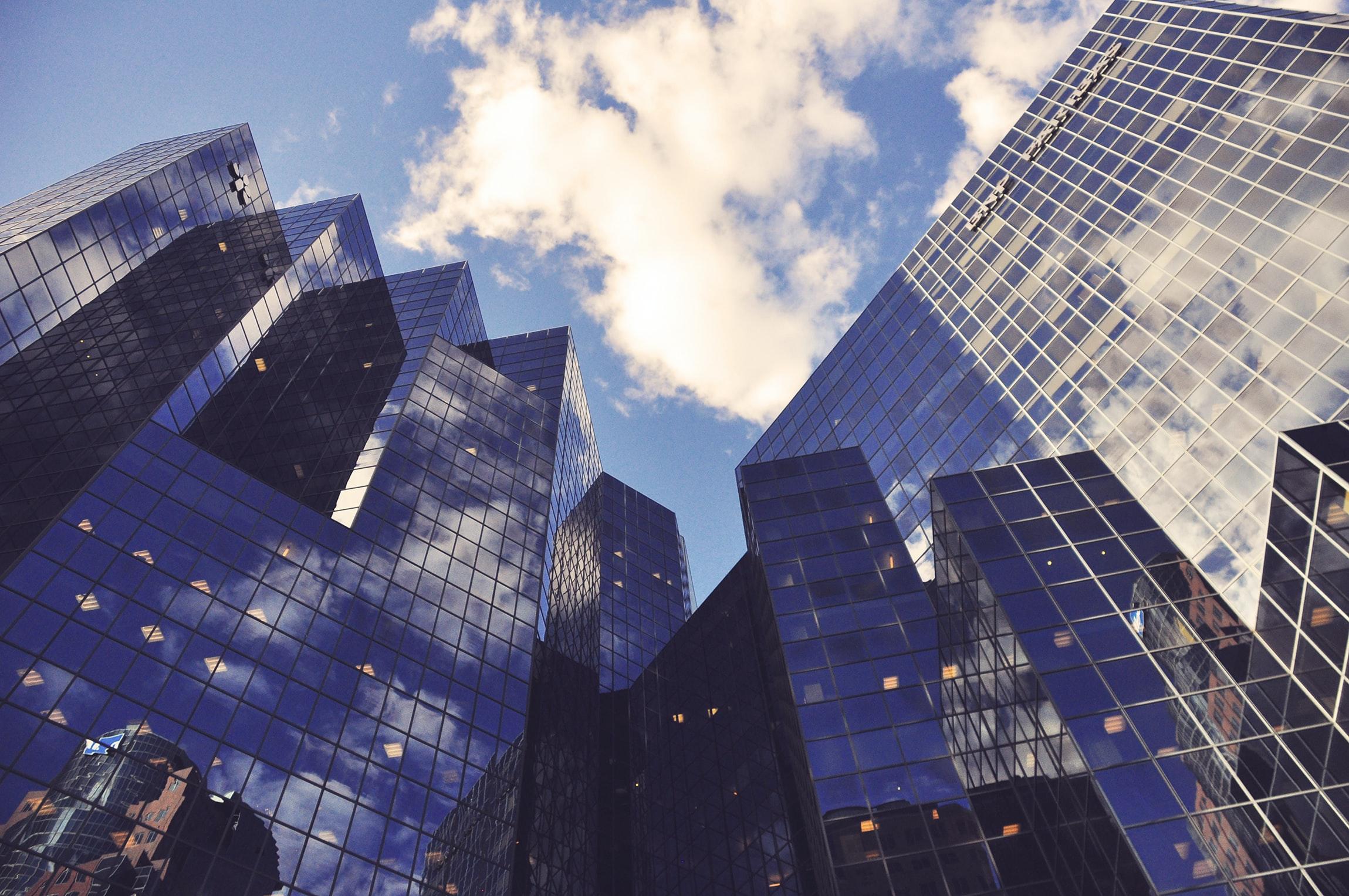 設立できる会社の種類は4つ!それぞれの特徴とおすすめの形態を解説